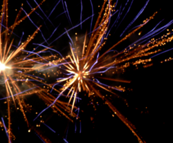 Salamander fireworks