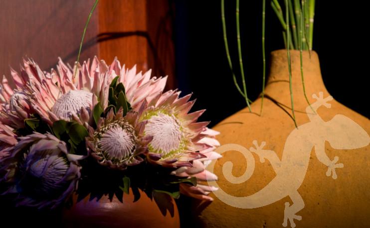 80th Birthday Event George Bizos Nelson Mandela flowers proteas