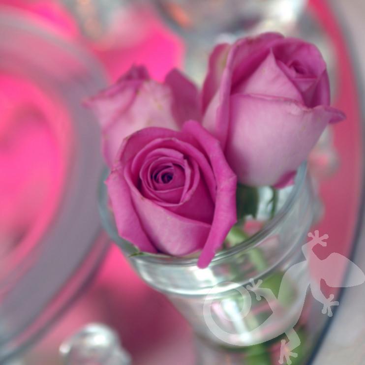 I do...first wedding portfolio, silverware tealight roses