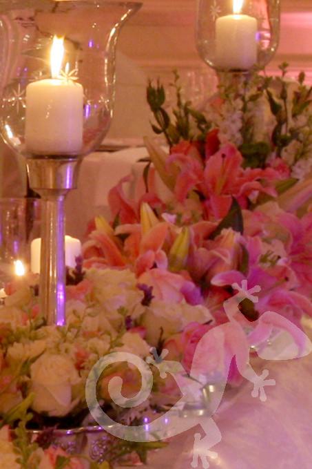 I do...first wedding portfolio,candles, crystal, glorious flowers