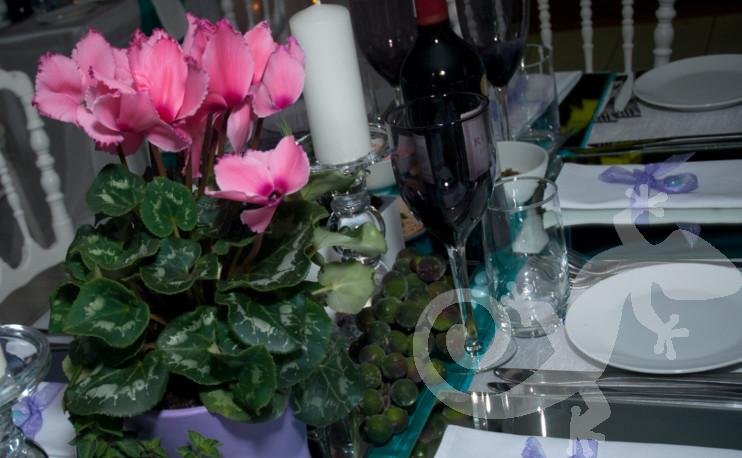 Greek taverna theme, island table setting, potted cyclamen