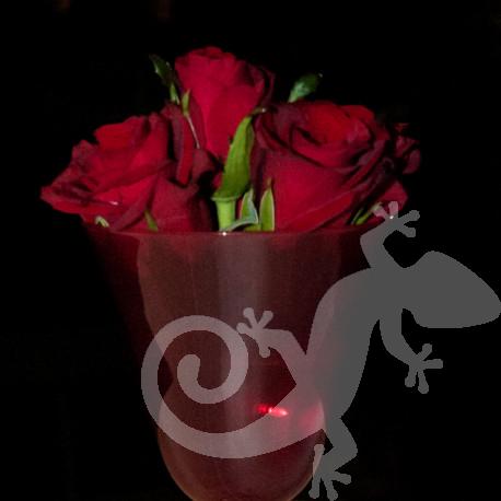 Red glass floral detail, Salamander design