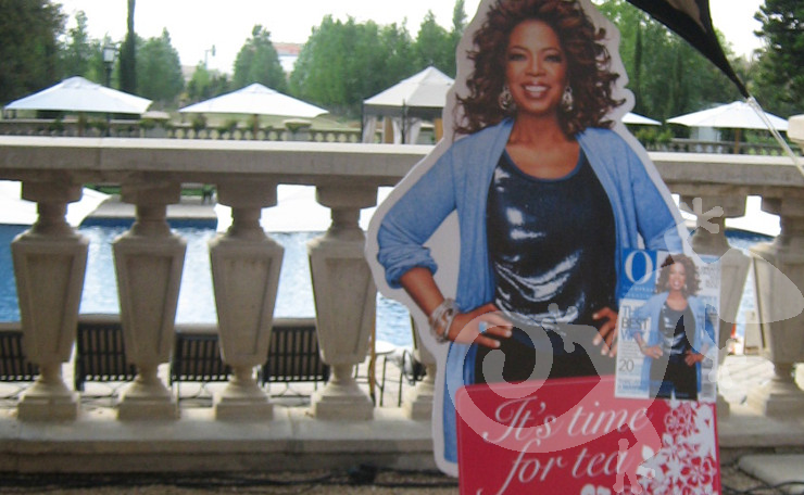 High-tea, Oprah, marketing launch, fresh look