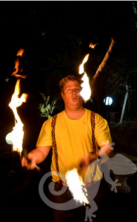 Great Gatsby, sweet 16, fire spinning, juggler